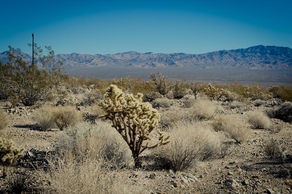 2015-01-07-Mojave-Wueste-Ausflug-Kalifornien-Baker-15