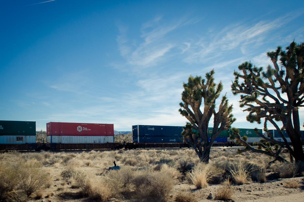 2015-01-07-Mojave-Wueste-Ausflug-Kalifornien-Baker-22
