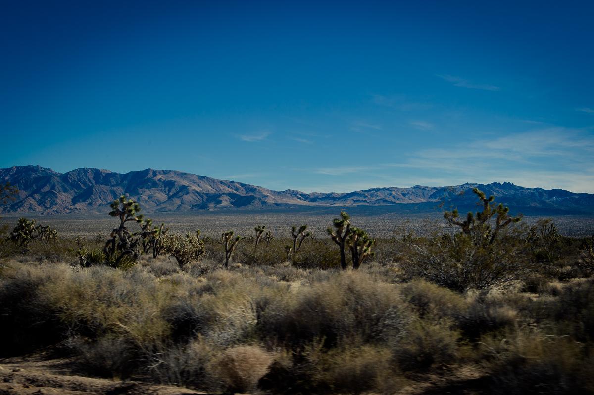 2015-01-07-Mojave-Wueste-Ausflug-Kalifornien-Baker-26