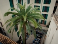 2015-Zimmer-407-Hotel-Tres-Palma-de-Mallorca-Spanien-17