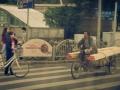 2015-05-24-Shanghai-durchs-Busfenster08