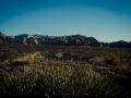 2015-01-07-Red-Rock-Canyon-Las-Vegas-Nevada-22